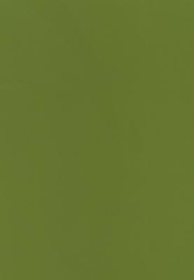 РС-0020-зеленая-трава